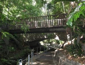 Bridge in Ferndell Griffith Park