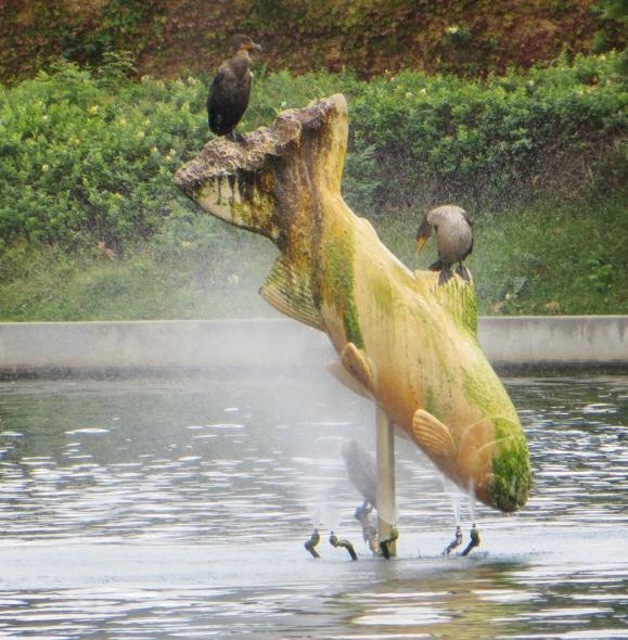 Fish fountain at East L.A. lake