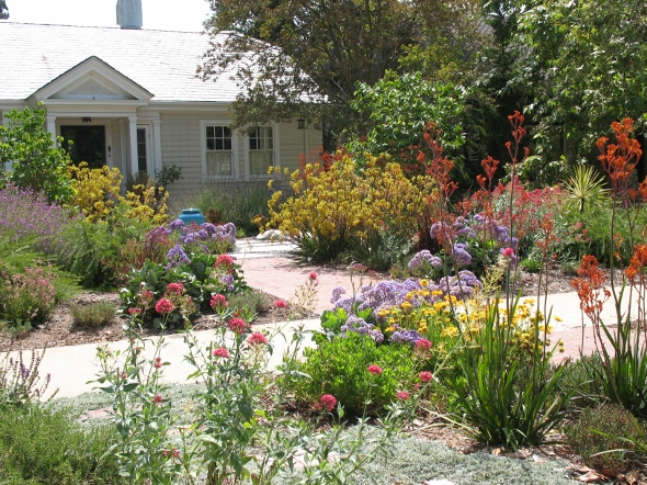 Drought tolerant plants lacitypix for Gardens in southern california