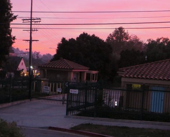 Winter solstice in Los Feliz, Los Angeles