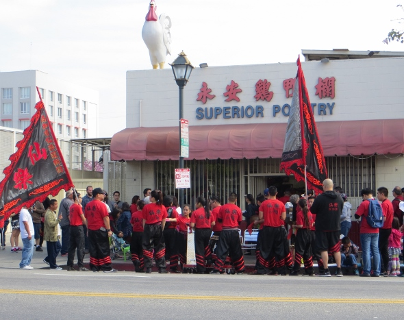 Superior Poultry Good luck