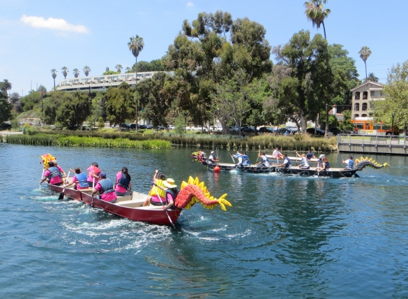 start of first dragon boat race at Lotus Festival
