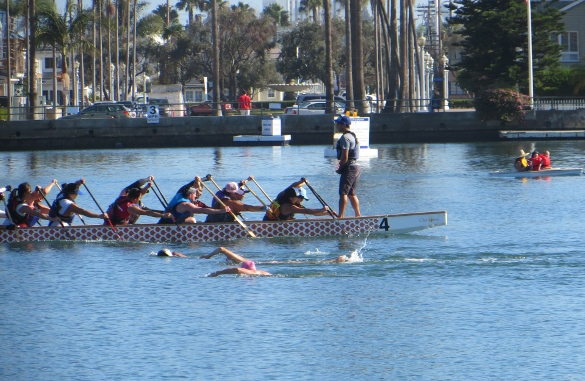 dragon boat swimmers kayak