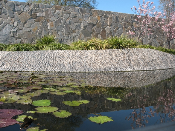 Los angeles gardens lacitypix for Japanese water garden plants