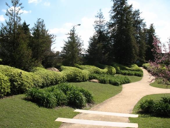wavy hedges at SuihoEn Garden