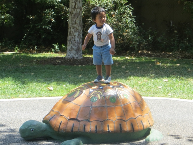 boy on turtle at Marsh Park