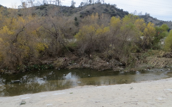 l.a. river in winter