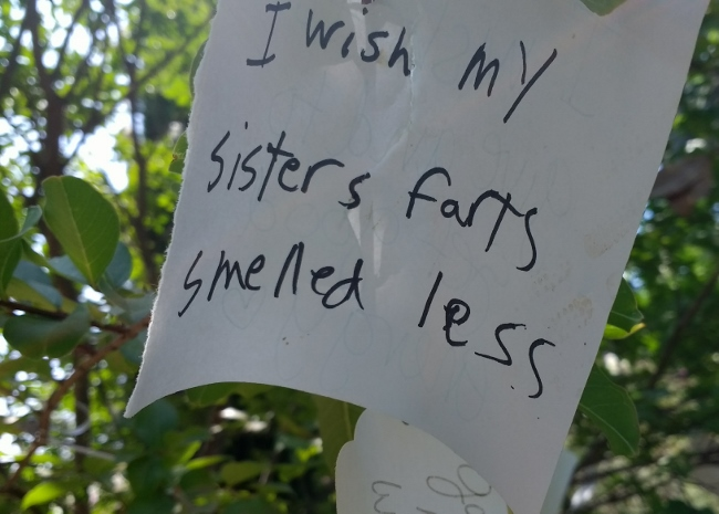 Sisters farts wish