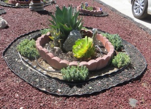 Flower Bed Blue Bottle garden LA City Pix
