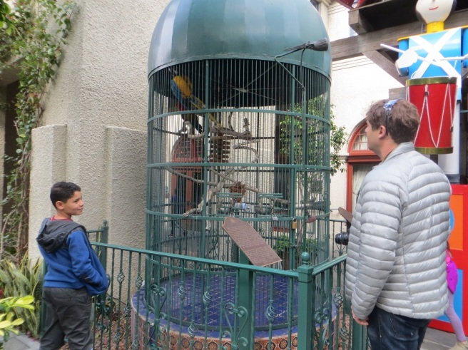 Parrots in a cage at Mission Inn Riverside CA